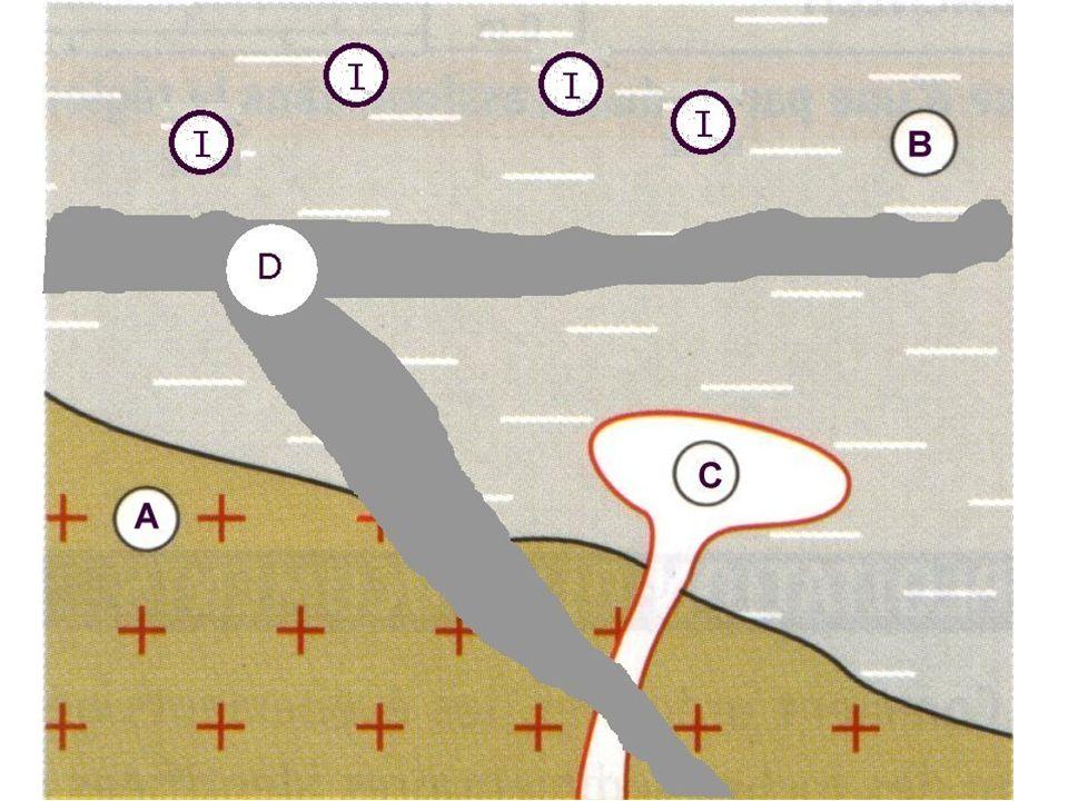 Le principe de recoupement Tout événement géologique qui en recoupe un autre lui est postérieur.