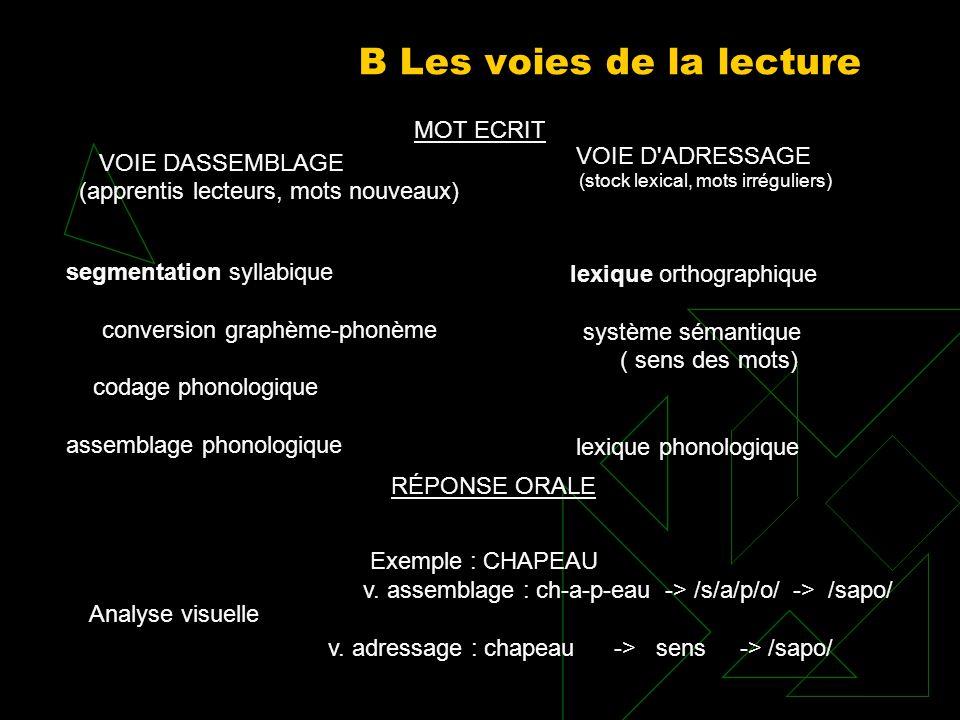 B Les voies de la lecture VOIE DASSEMBLAGE (apprentis lecteurs, mots nouveaux) segmentation syllabique conversion graphème phonème codage phonologique