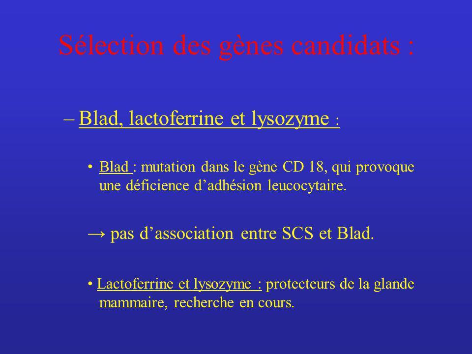 Sélection des gènes candidats : –Blad, lactoferrine et lysozyme : Blad : mutation dans le gène CD 18, qui provoque une déficience dadhésion leucocytaire.