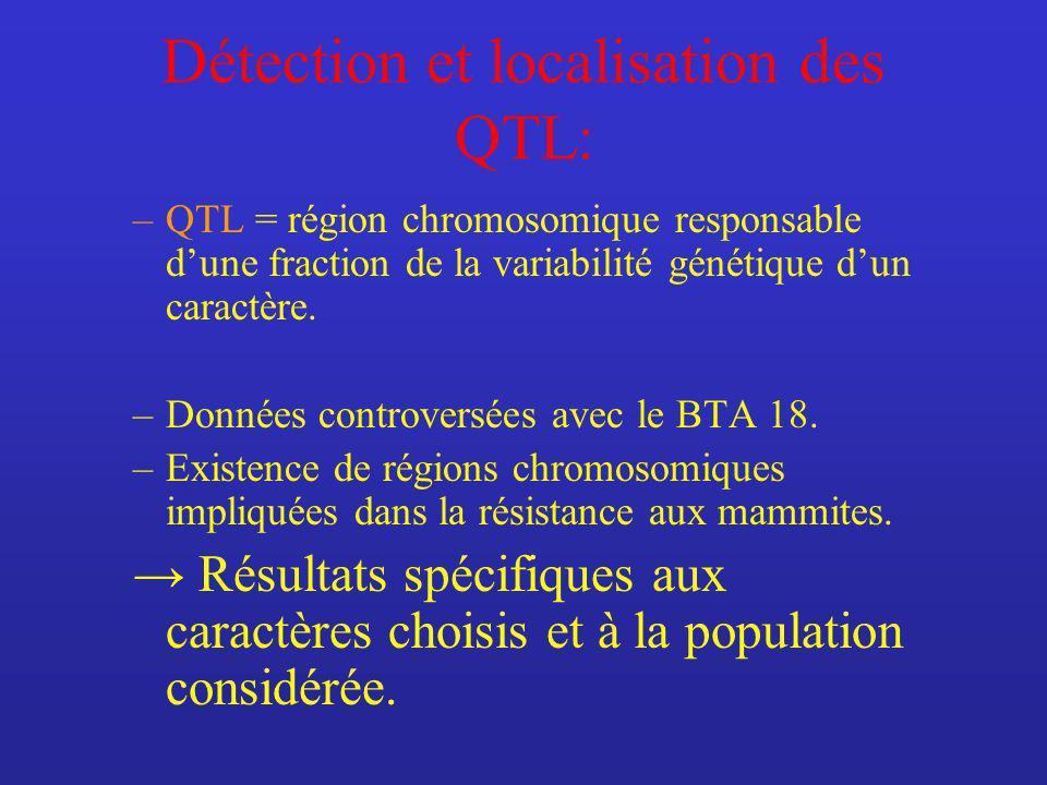 Détection et localisation des QTL: –QTL = région chromosomique responsable dune fraction de la variabilité génétique dun caractère.