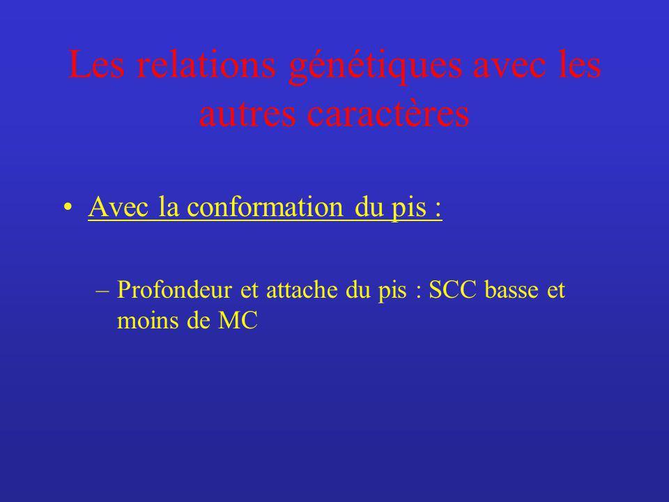 Les relations génétiques avec les autres caractères Avec la conformation du pis : –Profondeur et attache du pis : SCC basse et moins de MC