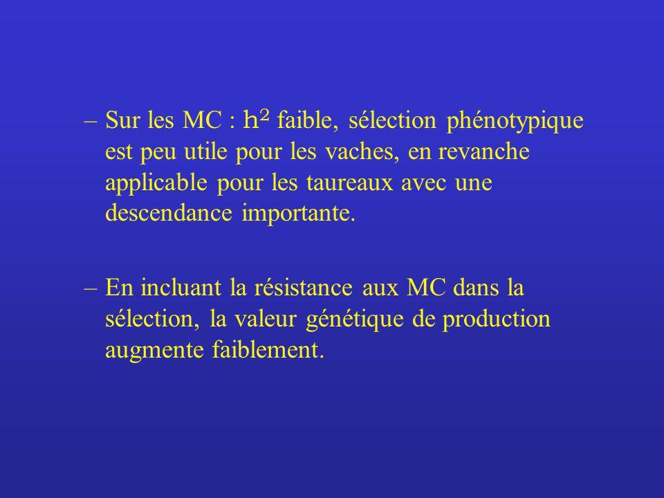 –Sur les MC : h 2 faible, sélection phénotypique est peu utile pour les vaches, en revanche applicable pour les taureaux avec une descendance importan