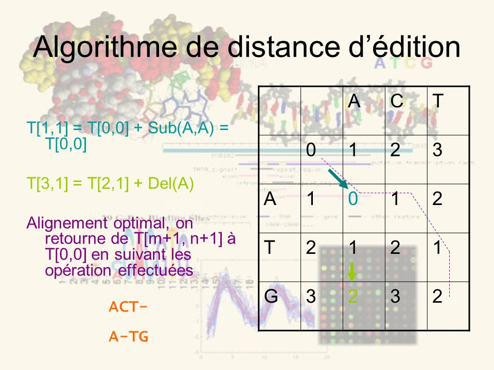 Algorithme de distance dédition T[1,1] = T[0,0] + Sub(A,A) = T[0,0] T[3,1] = T[2,1] + Del(A) Alignement optimal, on retourne de T[m+1, n+1] à T[0,0] en suivant les opération effectuées ACT 0123 A1012 T2121 G3232 ACT- A-TG