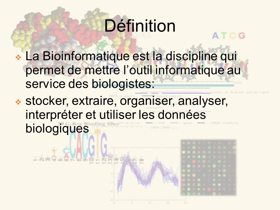 Définition La Bioinformatique est la discipline qui permet de mettre loutil informatique au service des biologistes: stocker, extraire, organiser, analyser, interpréter et utiliser les données biologiques