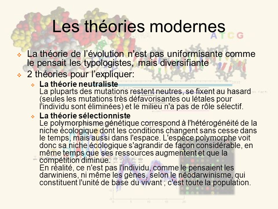 Les théories modernes La théorie de lévolution n'est pas uniformisante comme le pensait les typologistes, mais diversifiante 2 théories pour lexplique