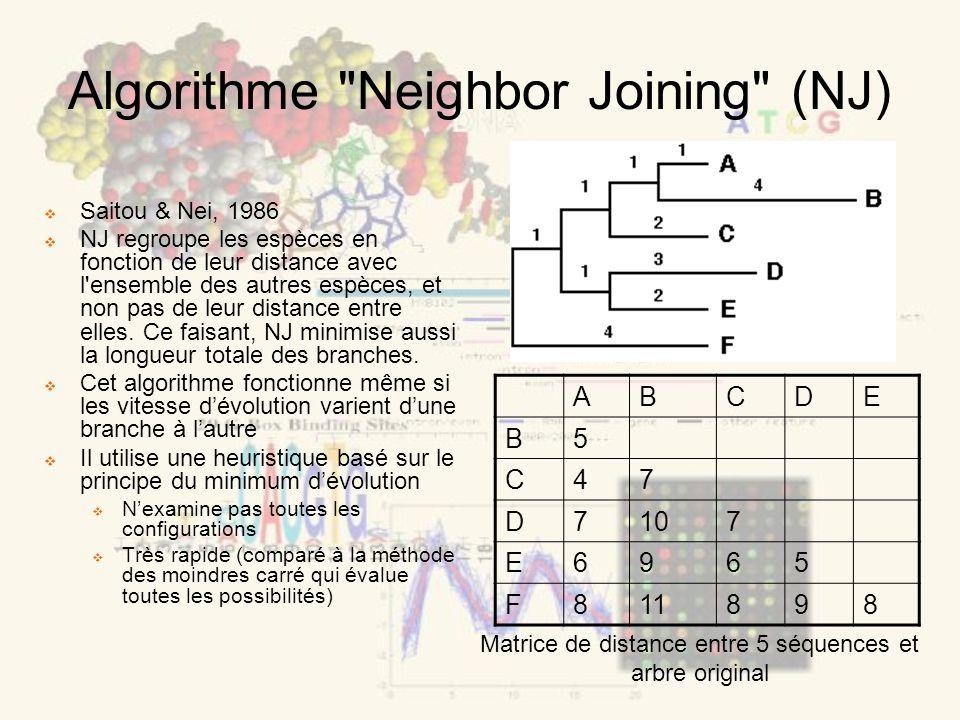 Algorithme Neighbor Joining (NJ) Saitou & Nei, 1986 NJ regroupe les espèces en fonction de leur distance avec l ensemble des autres espèces, et non pas de leur distance entre elles.