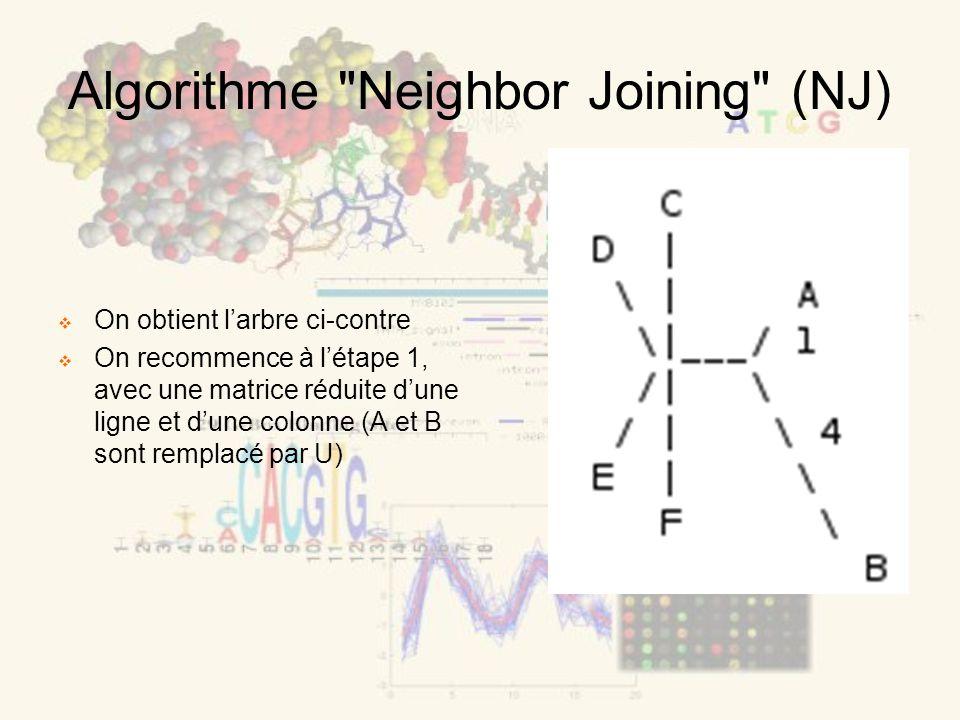 Algorithme Neighbor Joining (NJ) On obtient larbre ci-contre On recommence à létape 1, avec une matrice réduite dune ligne et dune colonne (A et B sont remplacé par U)