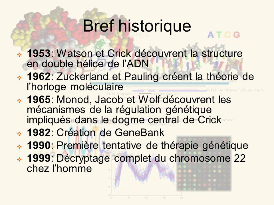 Bref historique 1953: Watson et Crick découvrent la structure en double hélice de lADN 1962: Zuckerland et Pauling créent la théorie de lhorloge moléc