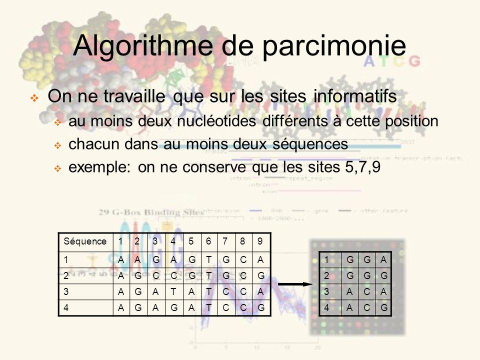 Algorithme de parcimonie 1GGA 2GGG 3ACA 4ACG Séquence123456789 1AAGAGTGCA 2AGCCGTGCG 3AGATATCCA 4AGAGATCCG On ne travaille que sur les sites informati