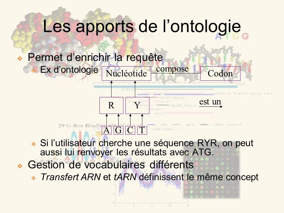 Permet denrichir la requête Ex dontologie Si lutilisateur cherche une séquence RYR, on peut aussi lui renvoyer les résultats avec ATG. Gestion de voca