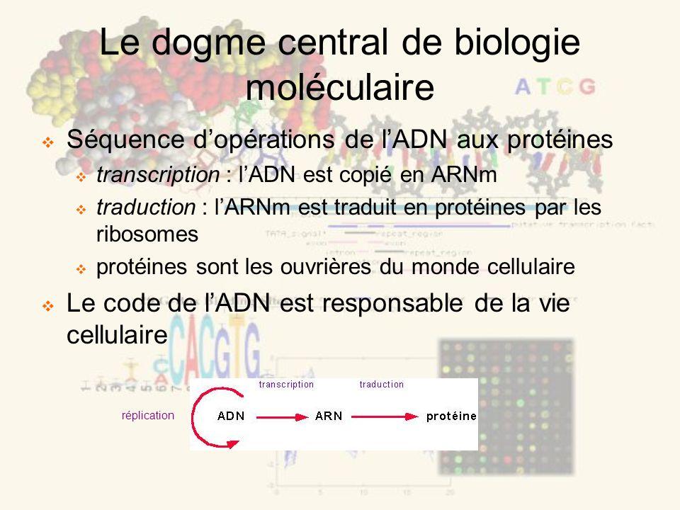 Le dogme central de biologie moléculaire Séquence dopérations de lADN aux protéines transcription : lADN est copié en ARNm traduction : lARNm est traduit en protéines par les ribosomes protéines sont les ouvrières du monde cellulaire Le code de lADN est responsable de la vie cellulaire réplication