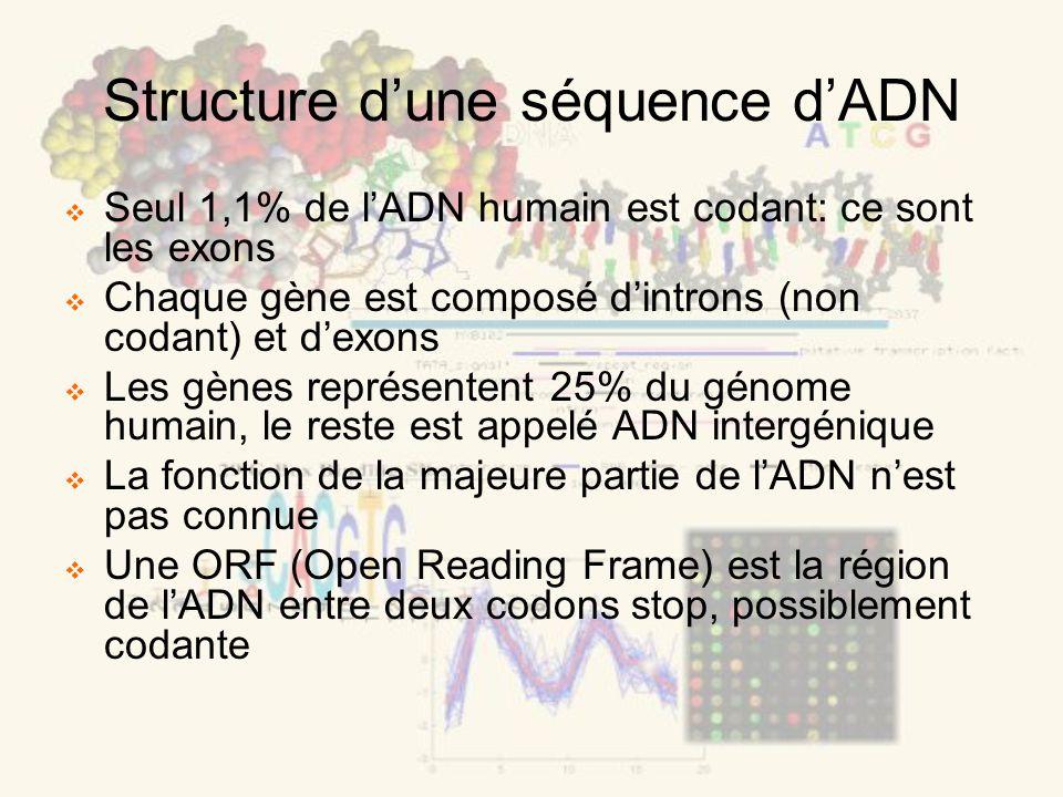 Structure dune séquence dADN Seul 1,1% de lADN humain est codant: ce sont les exons Chaque gène est composé dintrons (non codant) et dexons Les gènes