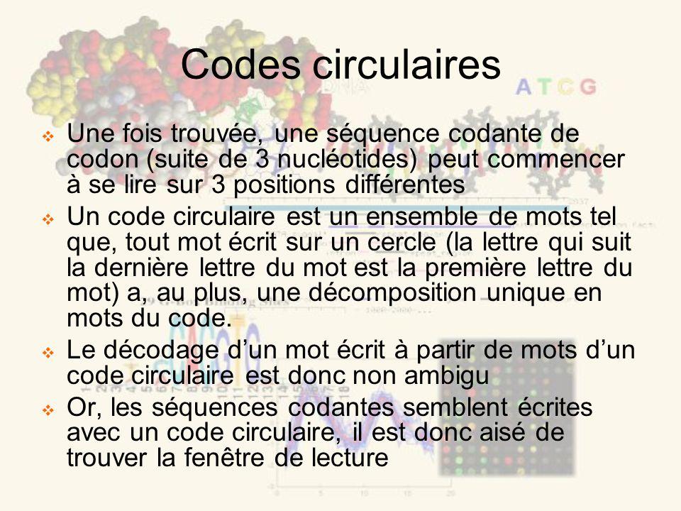 Codes circulaires Une fois trouvée, une séquence codante de codon (suite de 3 nucléotides) peut commencer à se lire sur 3 positions différentes Un code circulaire est un ensemble de mots tel que, tout mot écrit sur un cercle (la lettre qui suit la dernière lettre du mot est la première lettre du mot) a, au plus, une décomposition unique en mots du code.