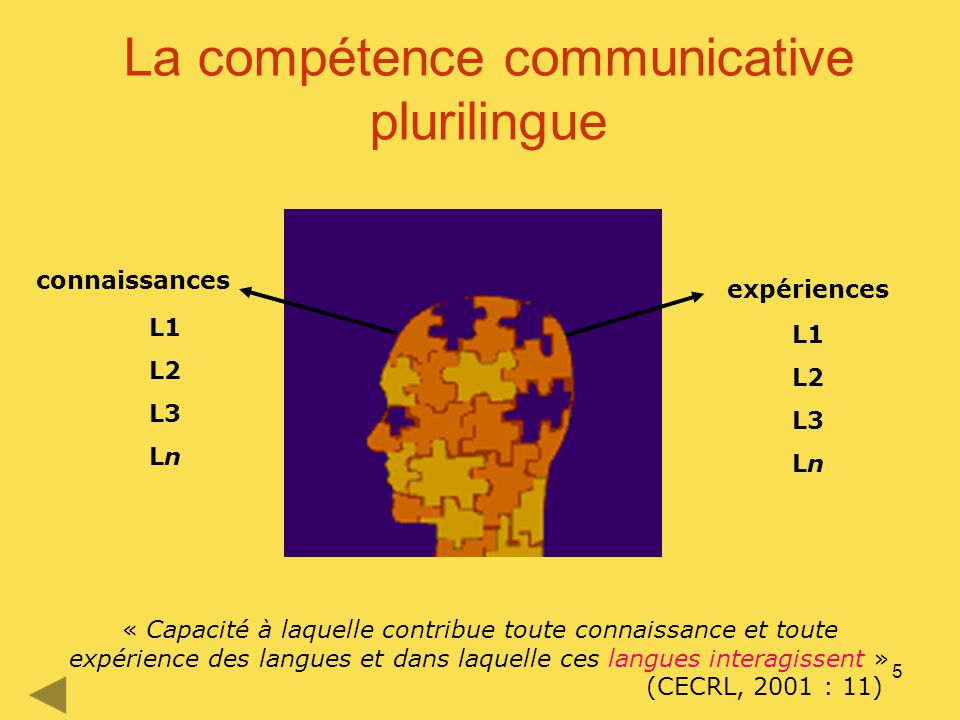 5 La compétence communicative plurilingue connaissances expériences L1 L2 L3 Ln L1 L2 L3 Ln « Capacité à laquelle contribue toute connaissance et tout