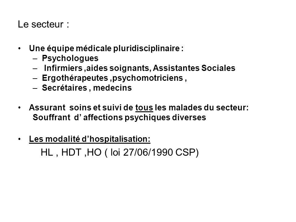 Le secteur : Une équipe médicale pluridisciplinaire : –Psychologues – Infirmiers,aides soignants, Assistantes Sociales –Ergothérapeutes,psychomotricie