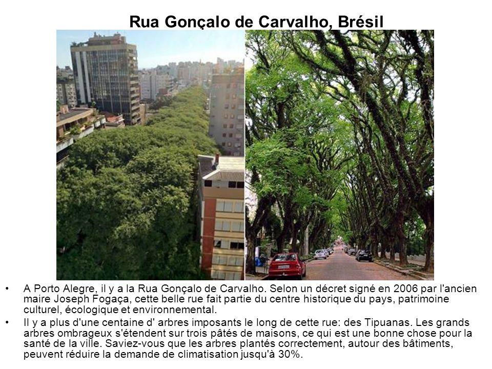 Rua Gonçalo de Carvalho, Brésil A Porto Alegre, il y a la Rua Gonçalo de Carvalho. Selon un décret signé en 2006 par l'ancien maire Joseph Fogaça, cet