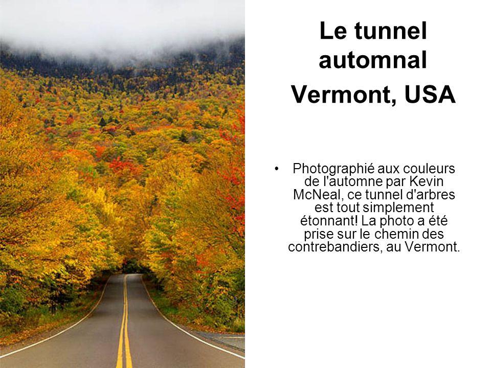 Le tunnel automnal Vermont, USA Photographié aux couleurs de l'automne par Kevin McNeal, ce tunnel d'arbres est tout simplement étonnant! La photo a é