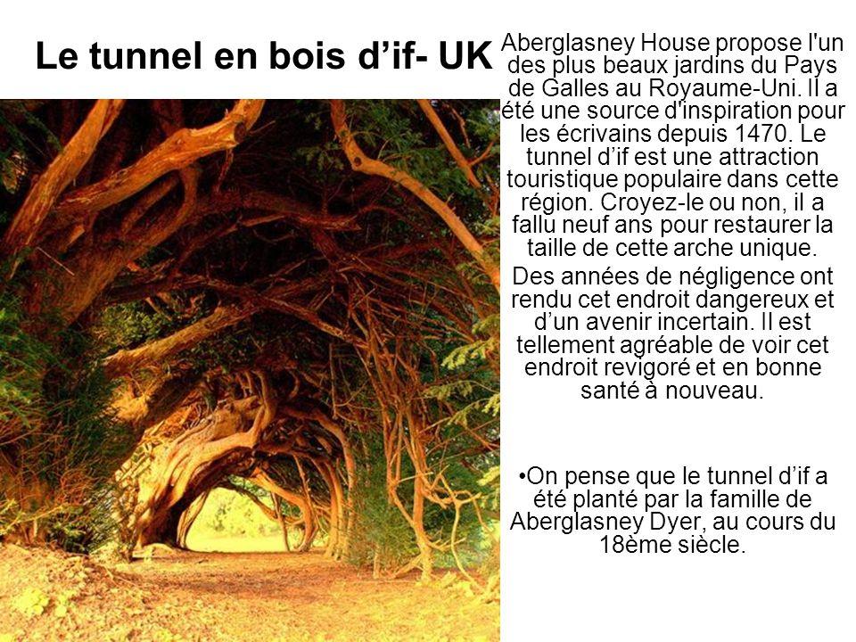 Le tunnel en bois dif- UK Aberglasney House propose l'un des plus beaux jardins du Pays de Galles au Royaume-Uni. Il a été une source d'inspiration po