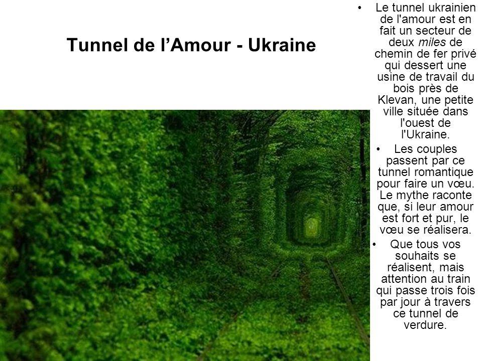 Tunnel de lAmour - Ukraine Le tunnel ukrainien de l'amour est en fait un secteur de deux miles de chemin de fer privé qui dessert une usine de travail