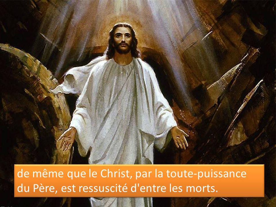 de même que le Christ, par la toute-puissance du Père, est ressuscité d'entre les morts.