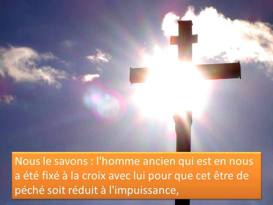 Nous le savons : l'homme ancien qui est en nous a été fixé à la croix avec lui pour que cet être de péché soit réduit à l'impuissance,
