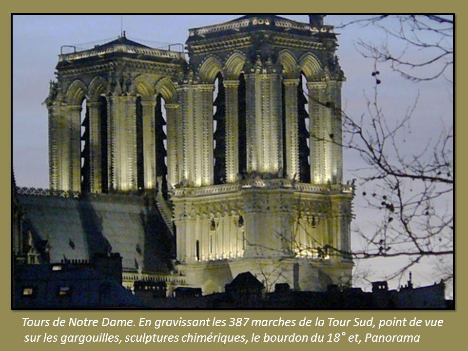 Transept Sud. La rosace Rose du Sud ou du Midi, offerte par le roi Saint Louis et, consacrée au Nouveau Testament.