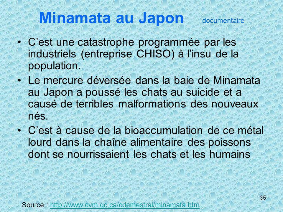 35 Minamata au Japon documentaire Cest une catastrophe programmée par les industriels (entreprise CHISO) à linsu de la population. Le mercure déversée