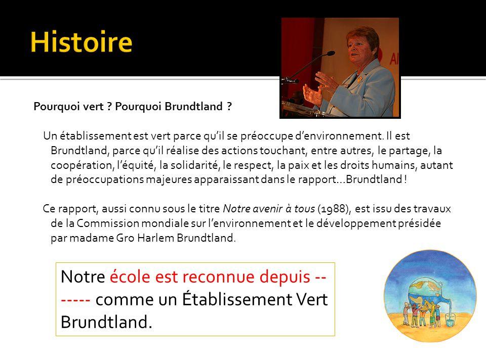 Pourquoi vert ? Pourquoi Brundtland ? Un établissement est vert parce quil se préoccupe denvironnement. Il est Brundtland, parce quil réalise des acti