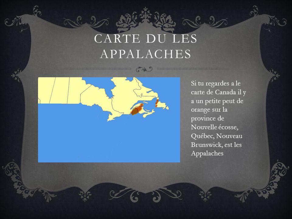 CARTE DU LES APPALACHES Si tu regardes a le carte de Canada il y a un petite peut de orange sur la province de Nouvelle écosse, Québec, Nouveau Brunsw