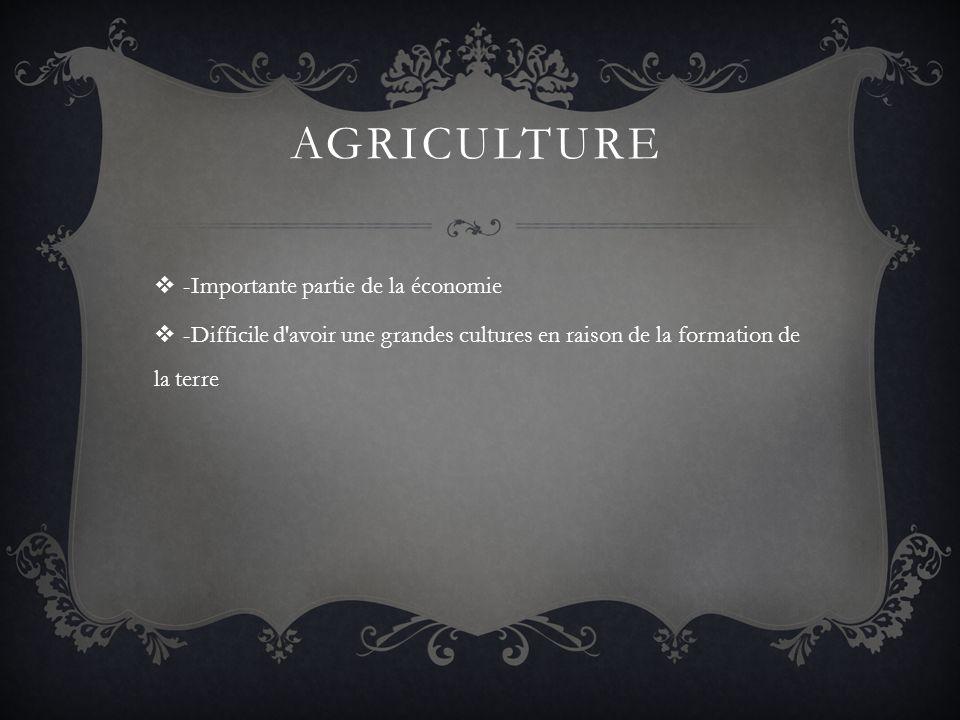 AGRICULTURE -Importante partie de la économie -Difficile d'avoir une grandes cultures en raison de la formation de la terre