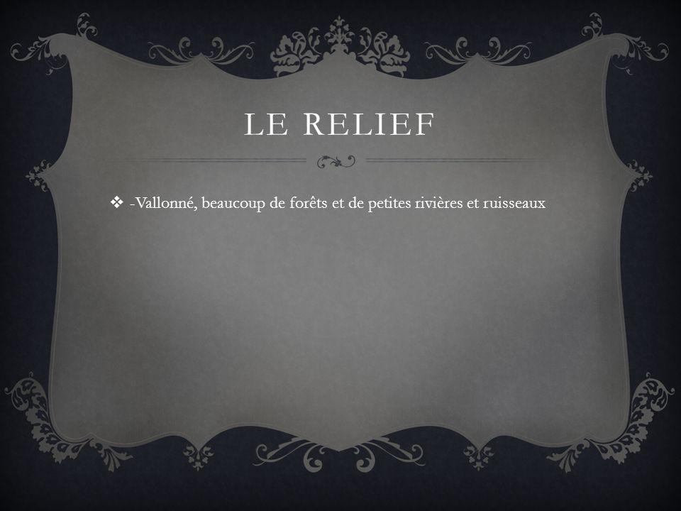 LE RELIEF -Vallonné, beaucoup de forêts et de petites rivières et ruisseaux