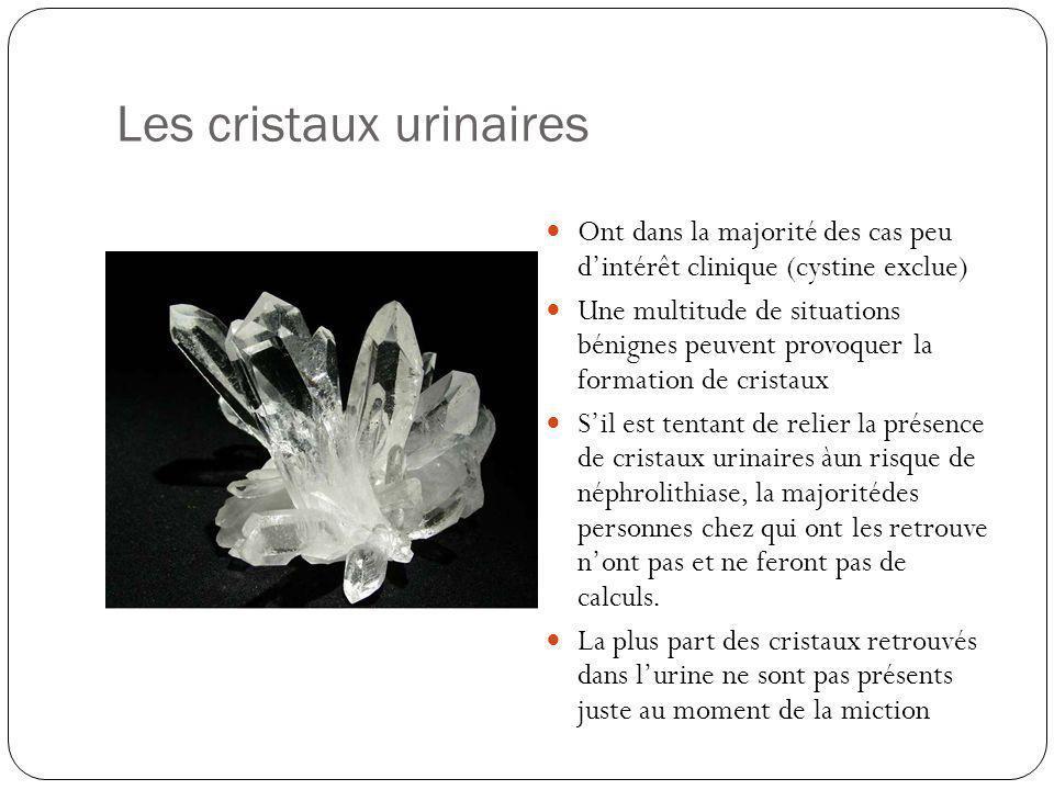 Les cristaux urinaires Ont dans la majorité des cas peu dintérêt clinique (cystine exclue) Une multitude de situations bénignes peuvent provoquer la f