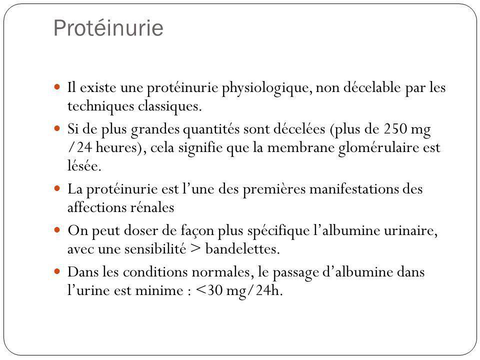 Protéinurie Il existe une protéinurie physiologique, non décelable par les techniques classiques. Si de plus grandes quantités sont décelées (plus de