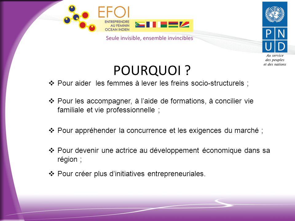 OBJECTIFS de l'EFOI AWARD 2014 •Valoriser et faire connaitre les initiatives entreprises par les femmes ; •Faire diminuer le taux de chômage des femmes ; •Donner l'opportunité aux femmes porteurs de projets d'accéder à l'ensemble des soutiens pour la création d'entreprise.