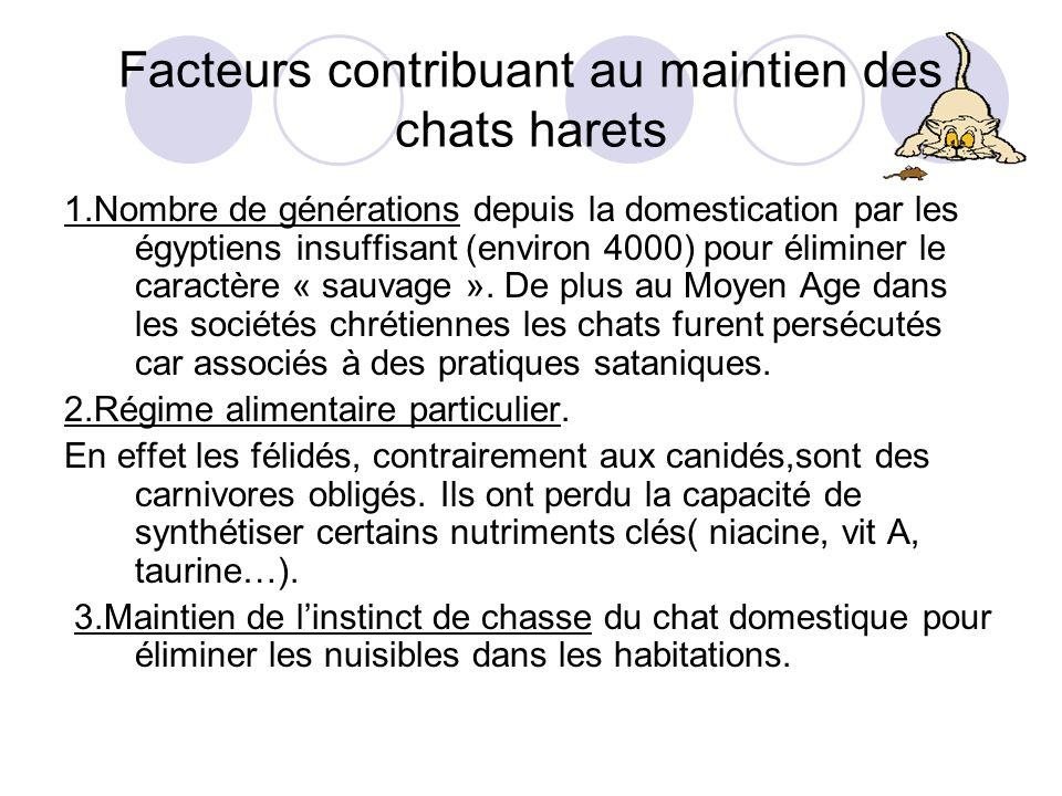 Facteurs contribuant au maintien des chats harets 1.Nombre de générations depuis la domestication par les égyptiens insuffisant (environ 4000) pour éliminer le caractère « sauvage ».