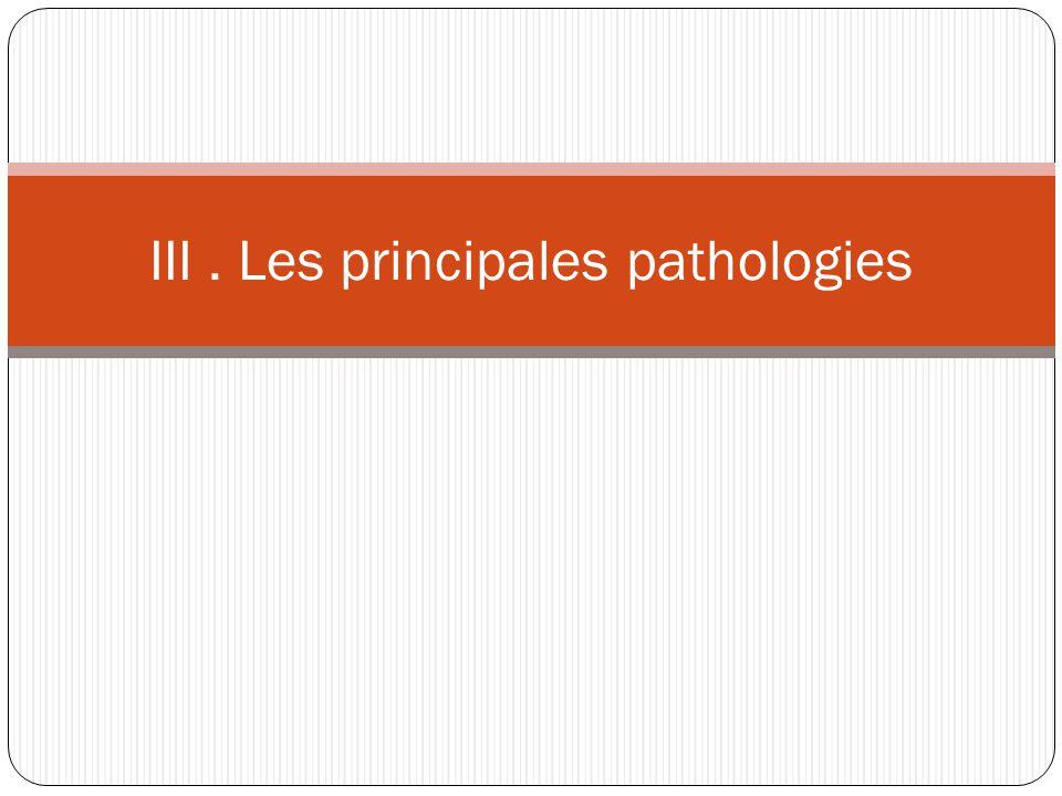 III. Les principales pathologies