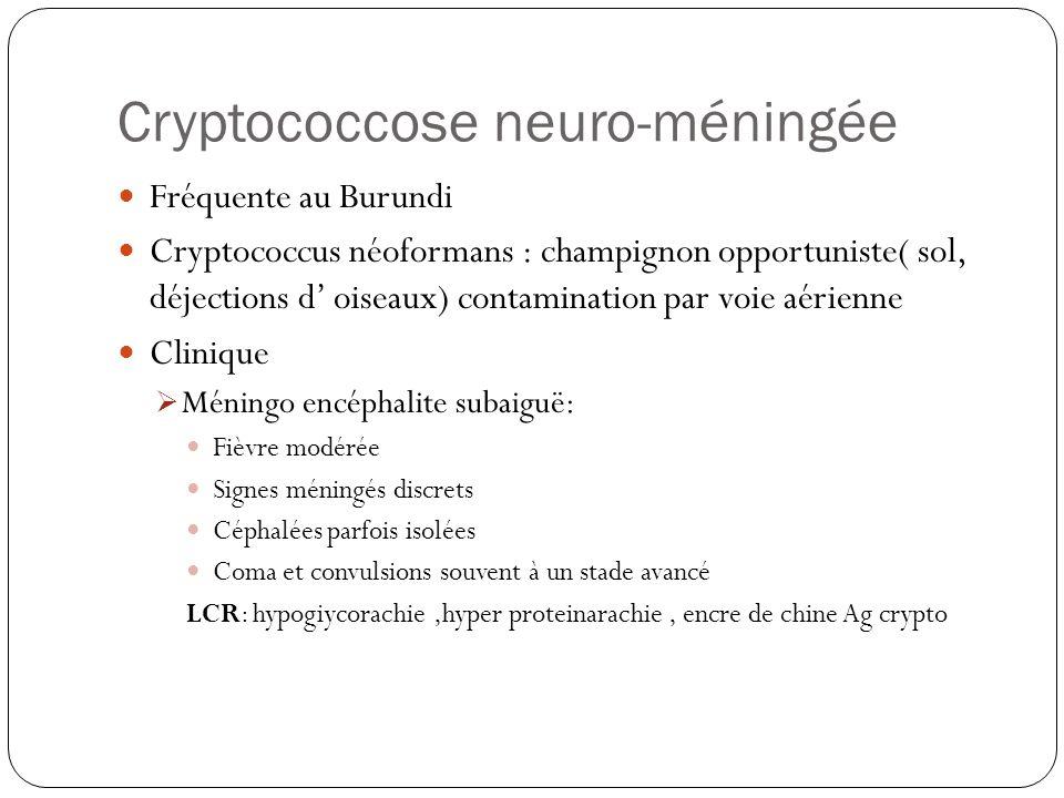 Cryptococcose neuro-méningée  Fréquente au Burundi  Cryptococcus néoformans : champignon opportuniste( sol, déjections d' oiseaux) contamination par