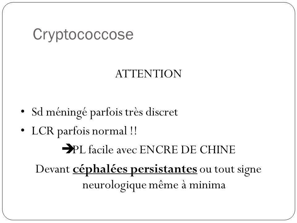 Coloration des cryptocoques à l'encre de chine