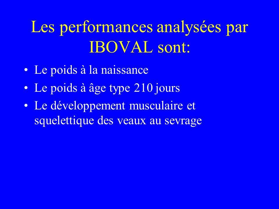 Les performances analysées par IBOVAL sont: •Le poids à la naissance •Le poids à âge type 210 jours •Le développement musculaire et squelettique des veaux au sevrage