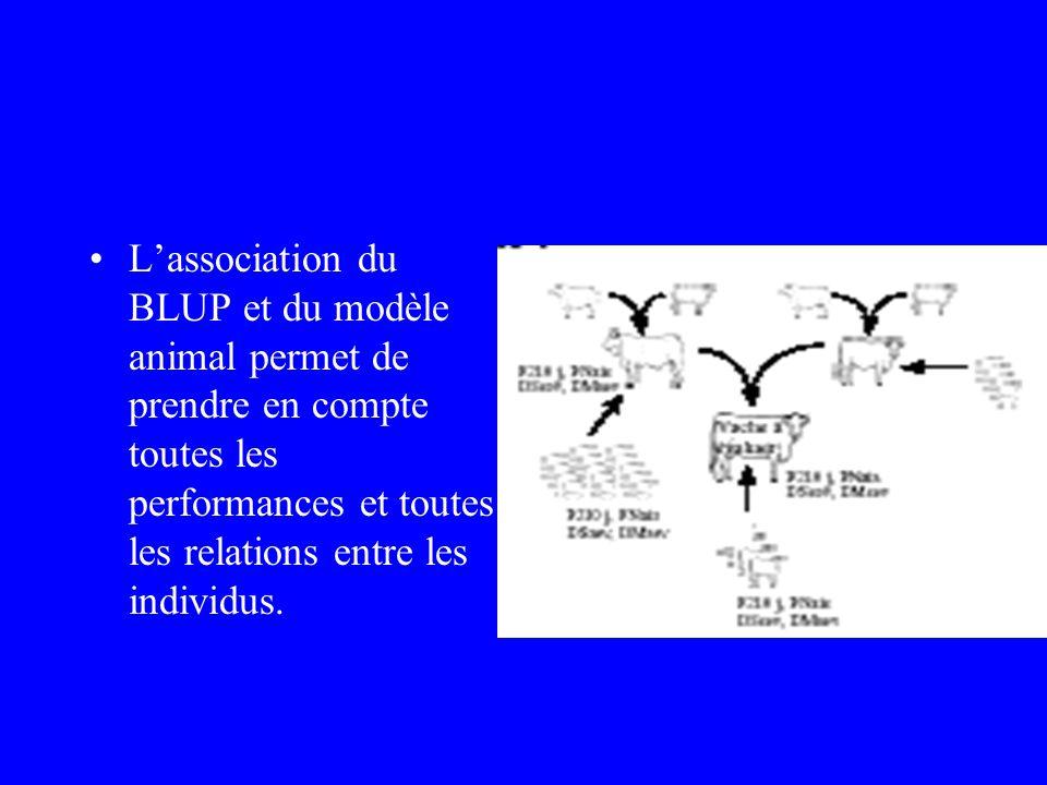 •L'association du BLUP et du modèle animal permet de prendre en compte toutes les performances et toutes les relations entre les individus.