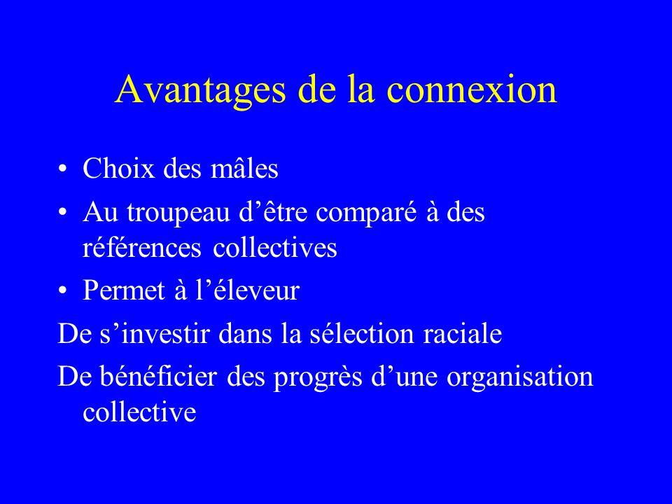 Avantages de la connexion •Choix des mâles •Au troupeau d'être comparé à des références collectives •Permet à l'éleveur De s'investir dans la sélection raciale De bénéficier des progrès d'une organisation collective