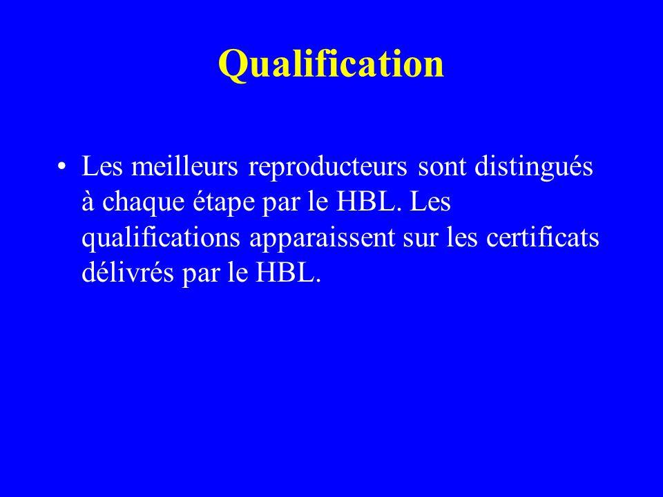 Qualification •Les meilleurs reproducteurs sont distingués à chaque étape par le HBL.