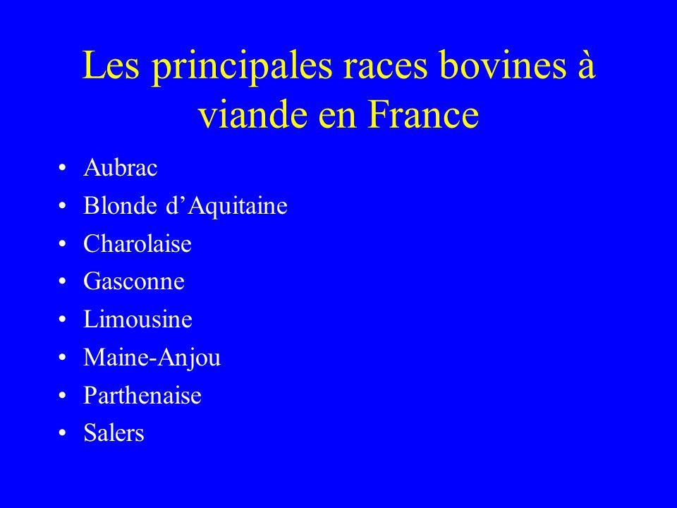 Les principales races bovines à viande en France •Aubrac •Blonde d'Aquitaine •Charolaise •Gasconne •Limousine •Maine-Anjou •Parthenaise •Salers