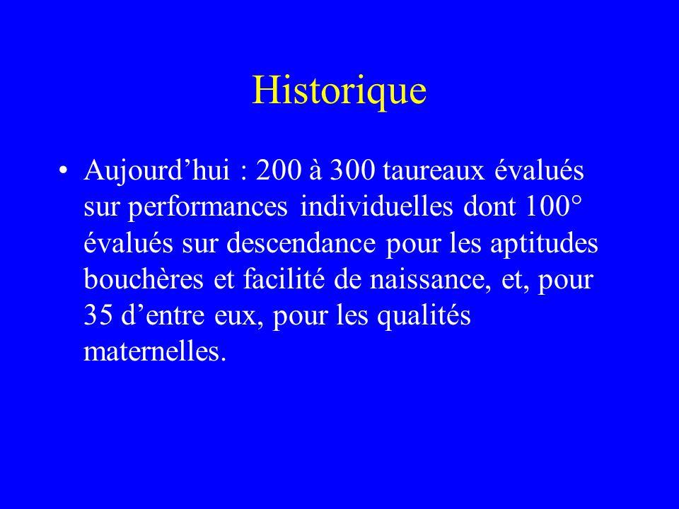 Historique •Aujourd'hui : 200 à 300 taureaux évalués sur performances individuelles dont 100° évalués sur descendance pour les aptitudes bouchères et facilité de naissance, et, pour 35 d'entre eux, pour les qualités maternelles.