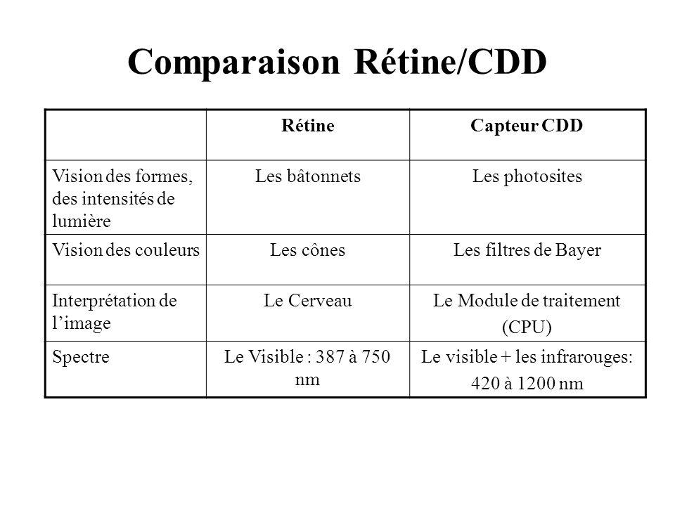 Comparaison Rétine/CDD RétineCapteur CDD Vision des formes, des intensités de lumière Les bâtonnetsLes photosites Vision des couleursLes cônesLes filt