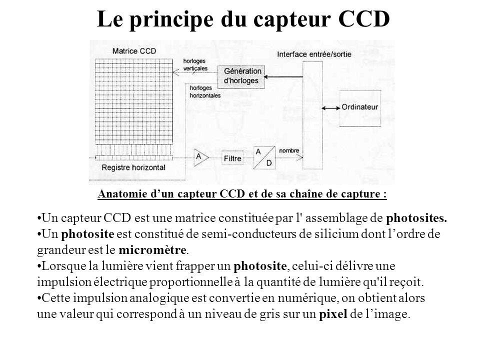 Le principe du capteur CCD •Un capteur CCD est une matrice constituée par l' assemblage de photosites. •Un photosite est constitué de semi-conducteurs