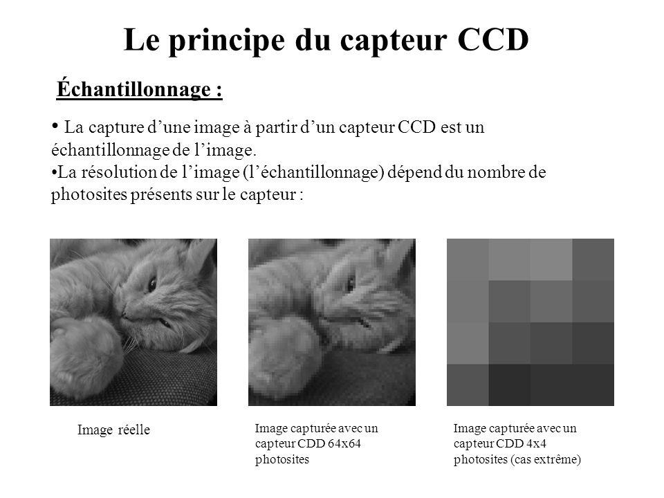 Le principe du capteur CCD • La capture d'une image à partir d'un capteur CCD est un échantillonnage de l'image. •La résolution de l'image (l'échantil