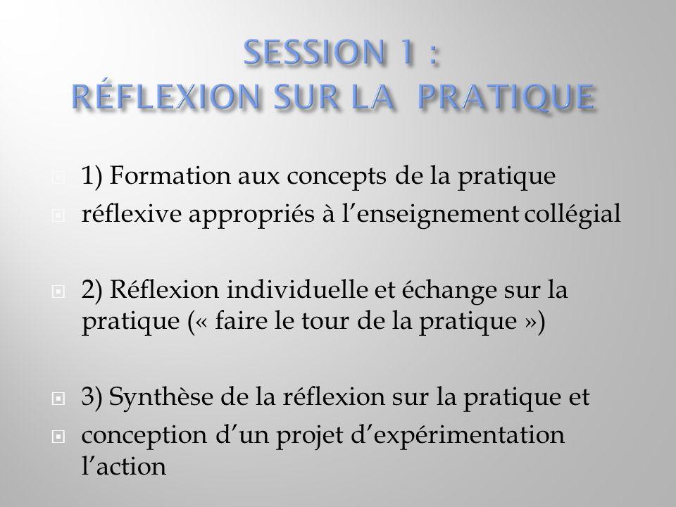   1) Formation aux concepts de la pratique  réflexive appropriés à l'enseignement collégial  2) Réflexion individuelle et échange sur la pratique