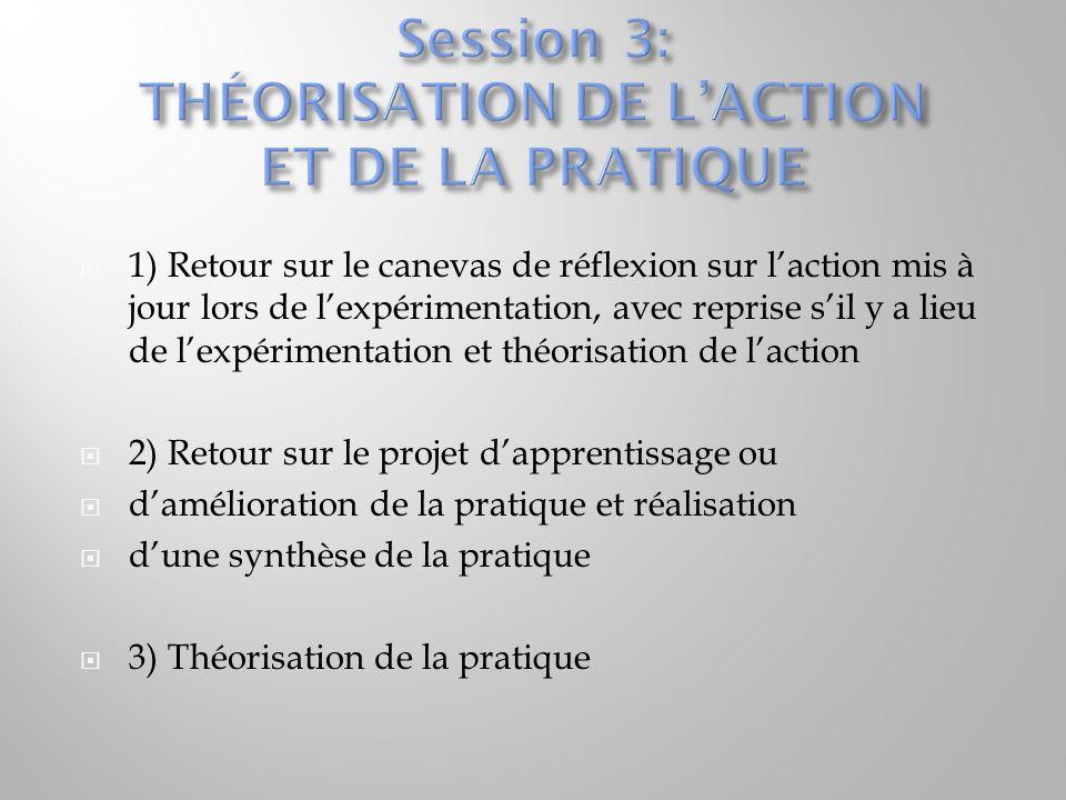  1) Retour sur le canevas de réflexion sur l'action mis à jour lors de l'expérimentation, avec reprise s'il y a lieu de l'expérimentation et théorisa