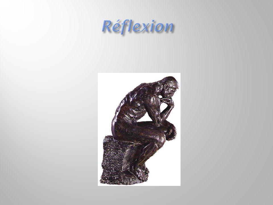  La pratique réflexive est à la fois pragmatique et identitaire.